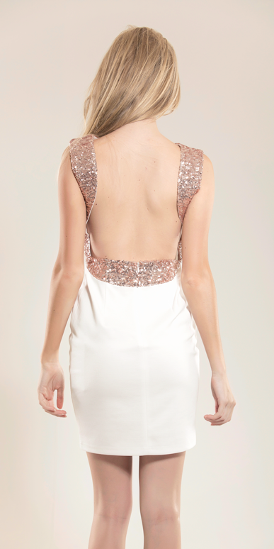 La Dolce Vita Sequin Neckline Dress